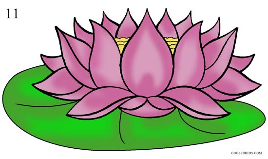 lotus in water plant diagram ps300 emergency ballast wiring how to draw flower step by pictures cool2bkids 11