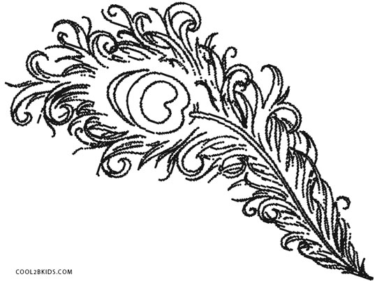 20 Easy Adult Coloring Pages Peacock Feathers Ideas And Designs