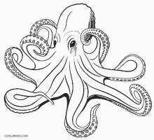 Printable Octopus Coloring Page For Kids Cool2bKids ...