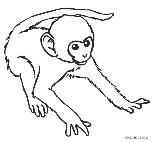 baby monkey coloring pages # 3