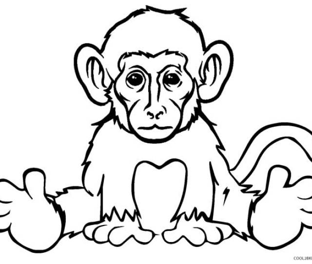 Free Printable Monkey Coloring Pages For Kids Coolbkids