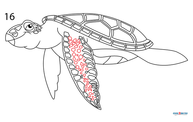 How To Draw A Sea Turtle Step By Step Pictures