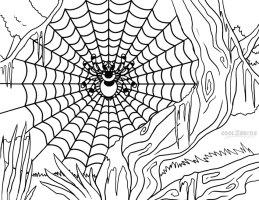 Ausmalbilder Spinnennetz   Malvorlagen kostenlos zum ...