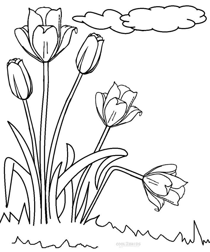 Ausmalbilder Tulpe - Malvorlagen kostenlos zum ausdrucken