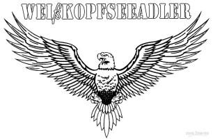 Ausmalbilder Weißkopfseeadler   Malvorlagen kostenlos zum ...