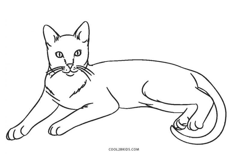Ausmalbilder Katz - Malvorlagen kostenlos zum ausdrucken