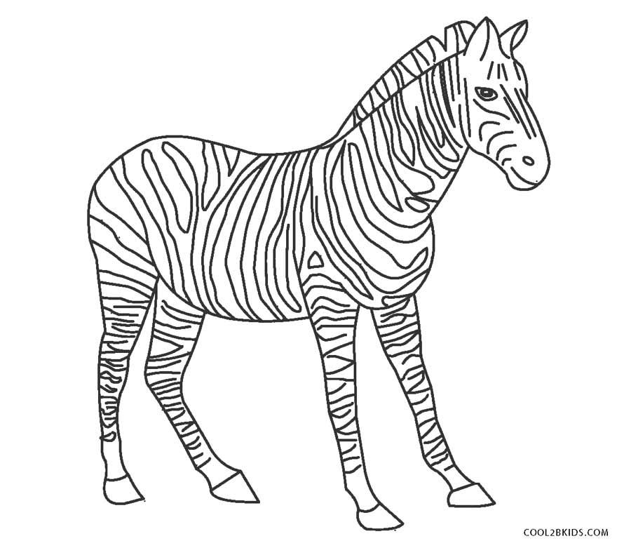 Ausmalbilder Zebra - Malvorlagen kostenlos zum ausdrucken