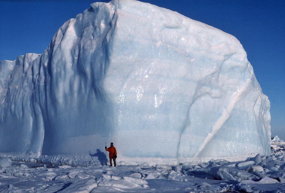 Animal Crossing Fall Wallpaper Icebergs In Antarctica