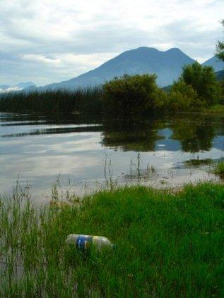 Litter Lake Pepsi