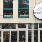 Kaffeesaurus am Friesenplatz