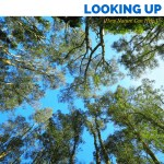 Looking Up: How Nature Can Help Us