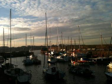 little-court-north-berwick-harbour-view