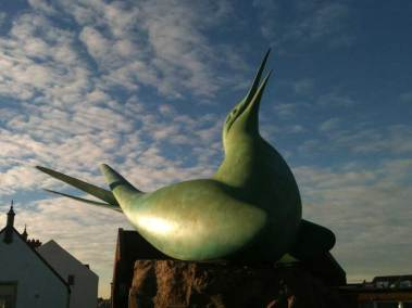 no-8-victoria-road-north-berwick-bird