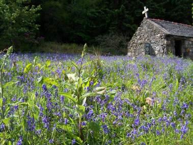 skye-woodhouse-outside