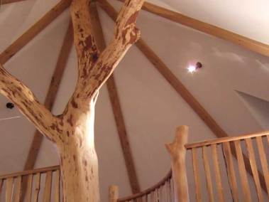 treehouse-staircase-top