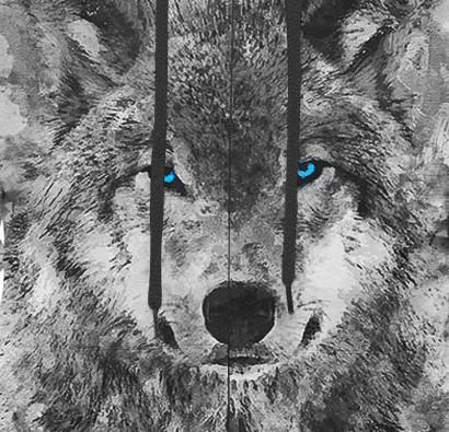 White Wolf Hoodie zoom