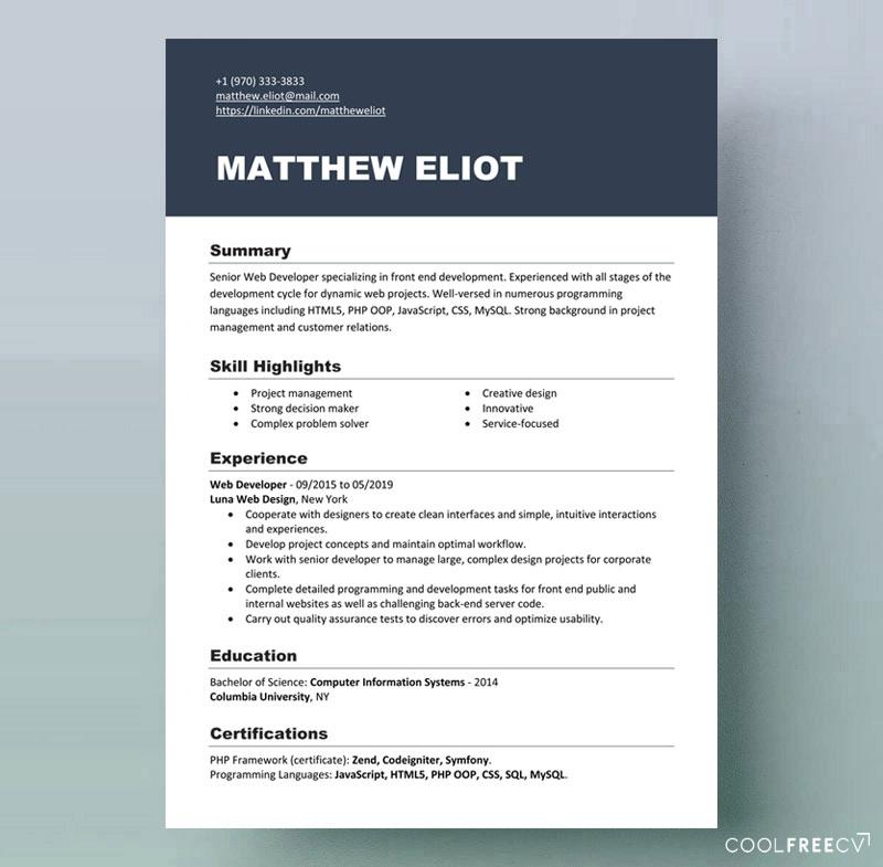 modern resume template developer