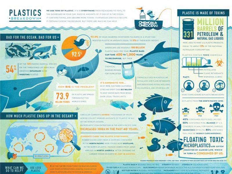 Infographic Plastic in de oceaan