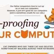 Katten & Computers Infographic Thumbnail