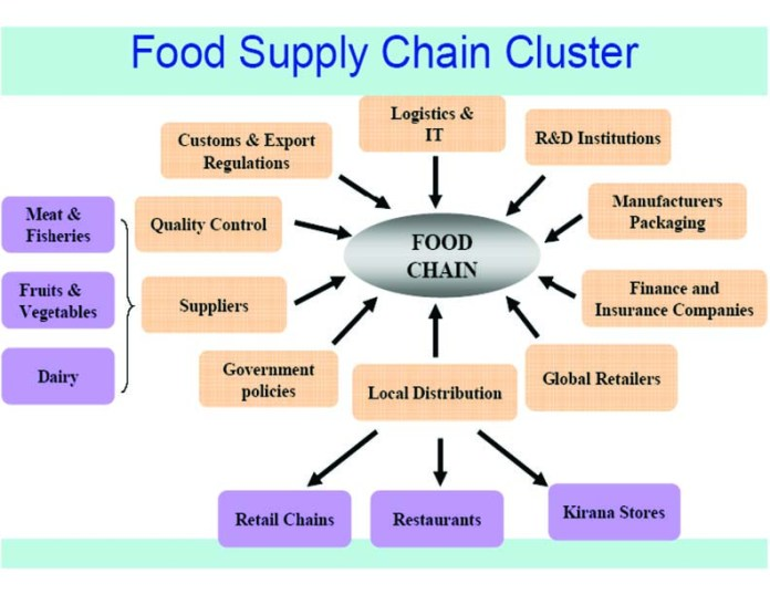 Cold Chain Supply Cluster With All Stake Holders