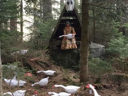Märchenwald am Großen Arbersee