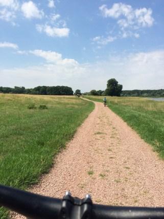 Elberadweg kurz vor Aken