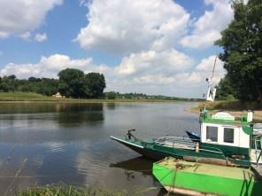 Elbe bei Kleinzadel