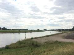 Die Elbe bei Strehla