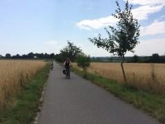 Zwischen Dresden und Radebeul