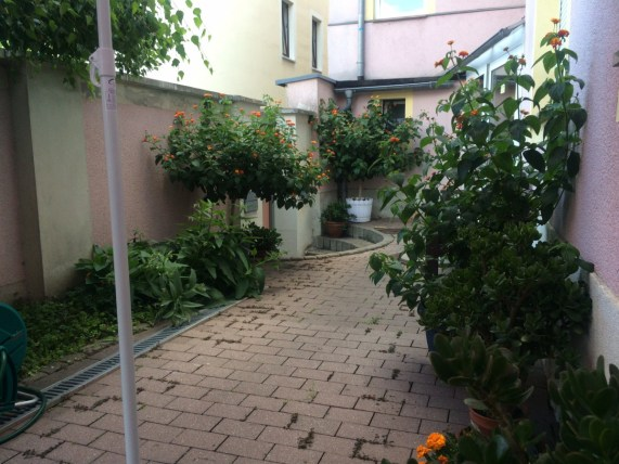 Hier entspannen Pilger und Radler: Garten der Pension und Bäckerei Behnisch in Strehla