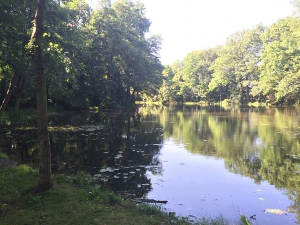 Waldsee Weßnig