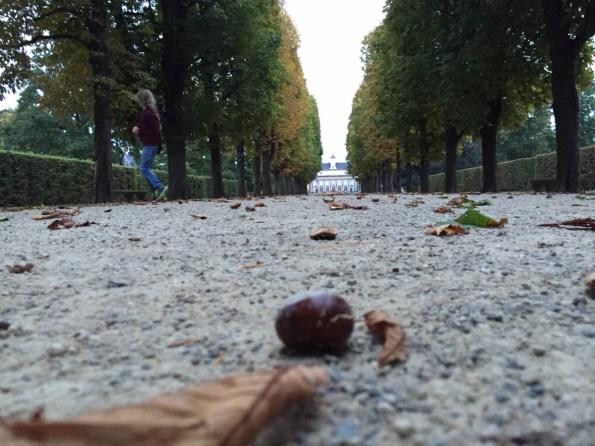 Weg zum Schlosspark Pillnitz