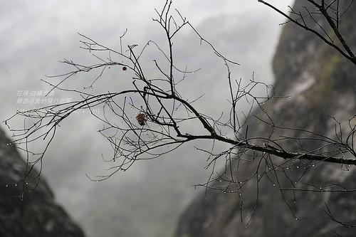 花蓮太魯閣【白楊步道&水濂洞】 @麻吉小兔吃貨旅行團