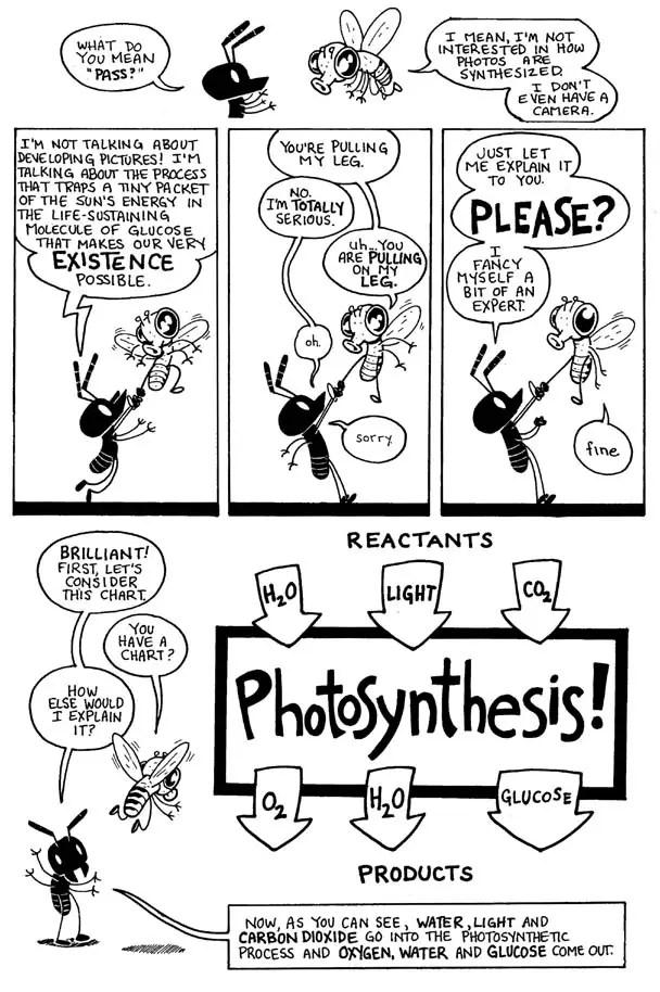 Photosynthesis Puns