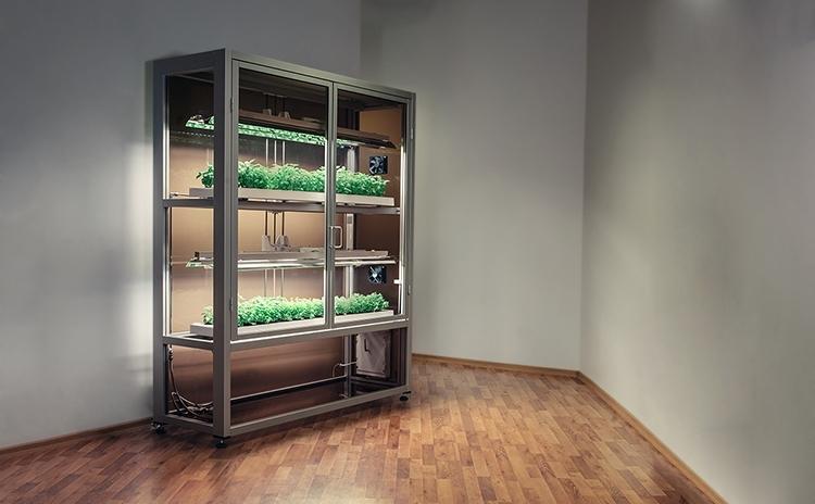 Hydroponic System Grow Box Indoor Gardening