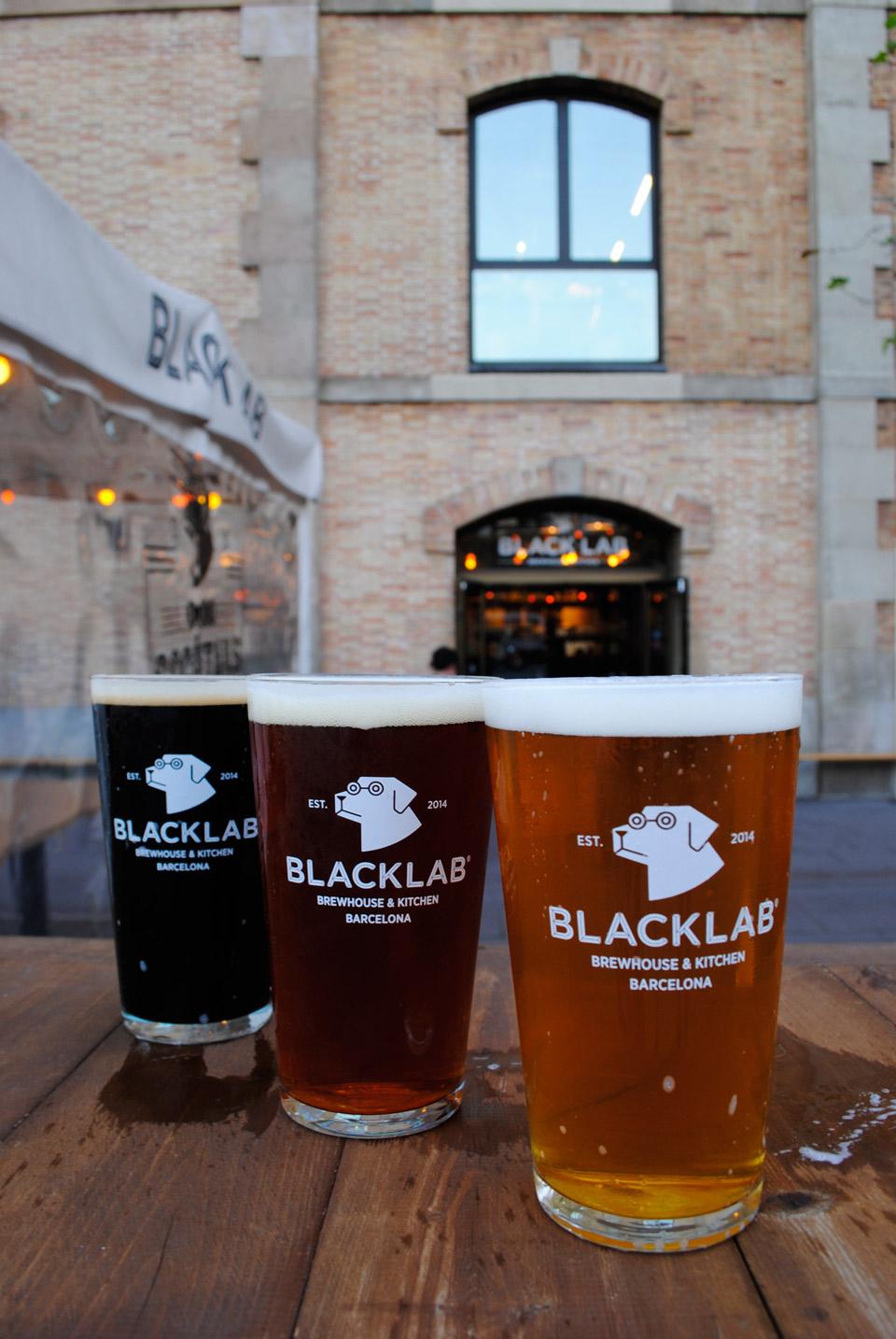 Blacklab2017-(9)