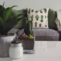 El diccionario de la casa sostenible