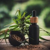Beneficios del aceite de CBD sobre el nivel de estrés