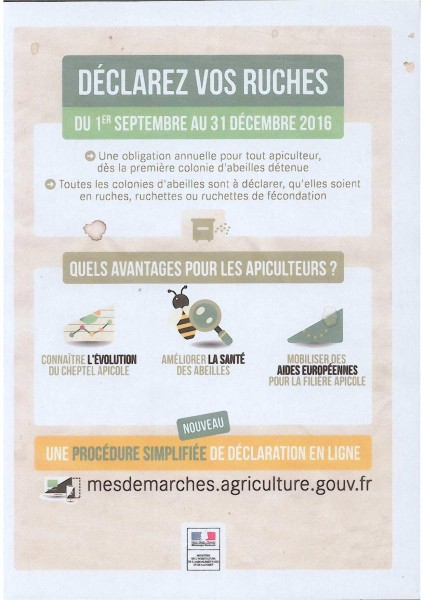 Déclaration ruche 2016 (GDSA)