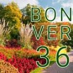Confermate le detrazioni per progettazione e manutenzione del giardino