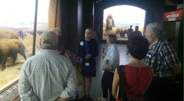 In a very dimly lit gallery, Irene stands with a group of attentively listening museumgoers on her left, and a brighly lit diorama of taxidemy bison on her right. She wears a blue employee badge and microphone headset.