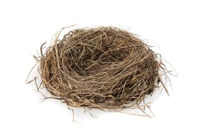 Empty Nestlings