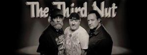 The Third nut Live Music Band Scranton Pittston PA