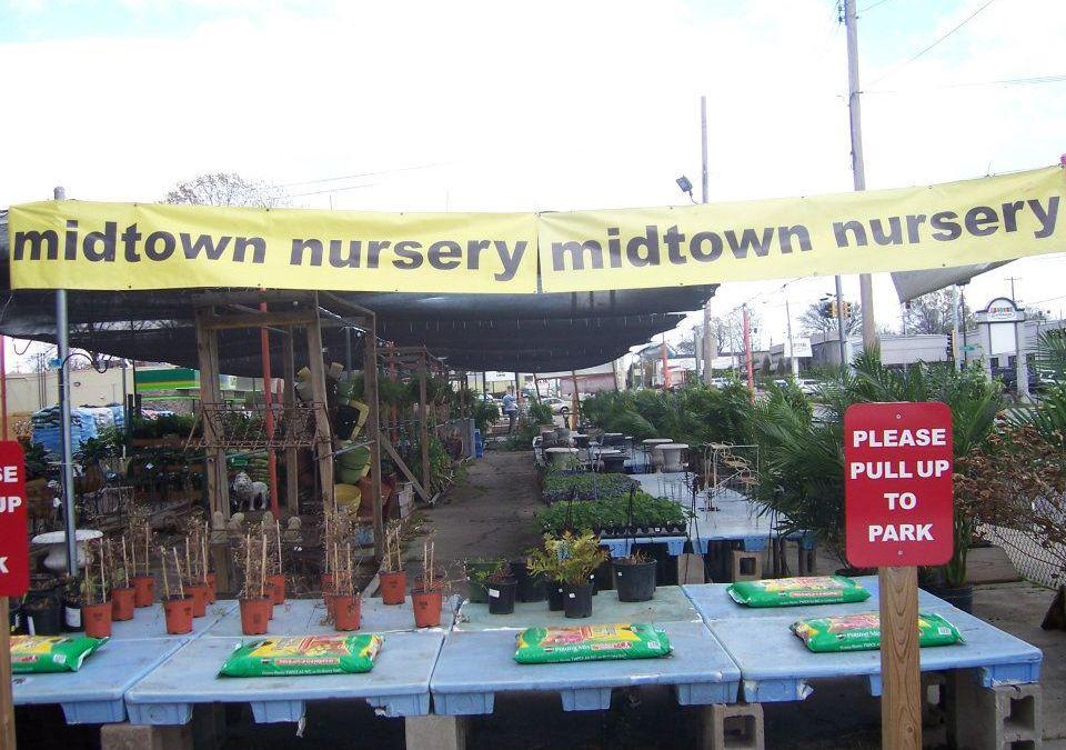 Midtown Nursery
