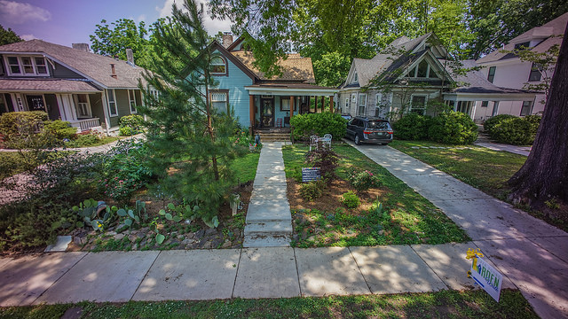 Robin's garden (Tim Wheat pic)