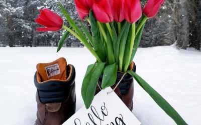 """Bob's Monthly Garden Checklist-March"""""""