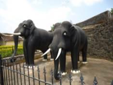 Madikeri Palace (5)