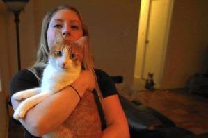 LAPD K9 Likely Responsible for Attacking Cat
