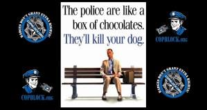 Speeding Undercover Davie Florida Police Almost Ran Over Dog