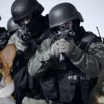California Bill Aims To Combat Puppycide